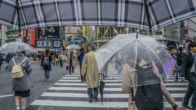梅雨って英語でどう言うの?